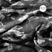 Cover des Albums Of Desire von The KVB