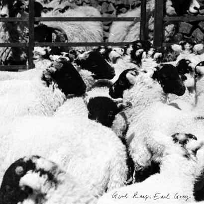 Cover des Albums Earl Grey von Girl Ray
