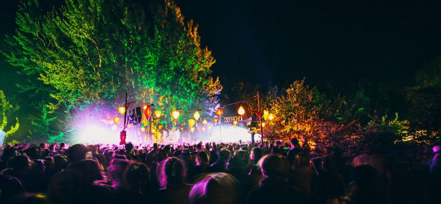 Foto vom Pangea Festival (Foto: Dan Petermann)