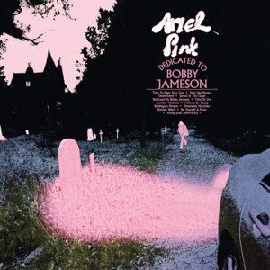 """Ariel Pink – """"Dedicated To Bobby Jameson"""" (Album der Woche)"""