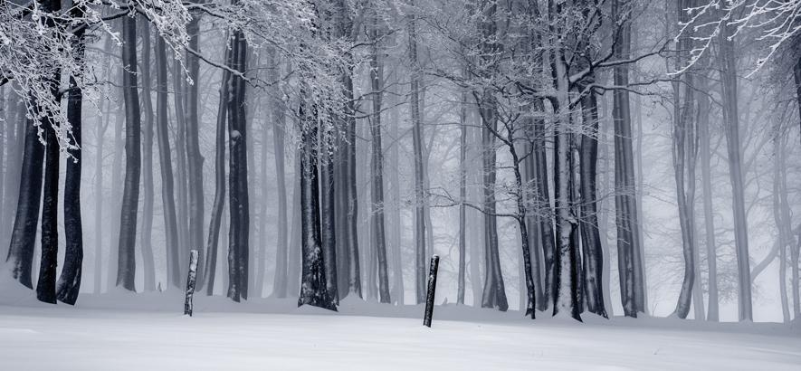 Elbphilharmonie Mixtape: neue Ausgabe am 2. Dezember von 12 bis 13 Uhr