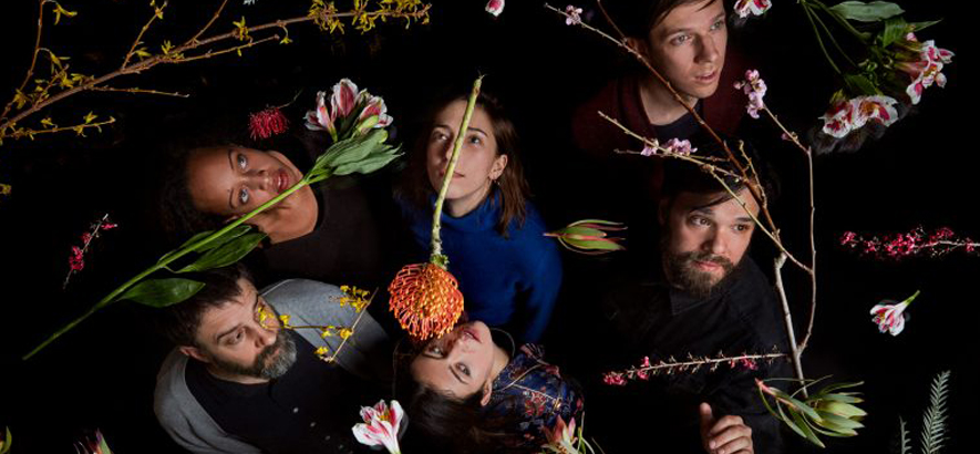 Dirty Projectors: neuer Song und neues Album