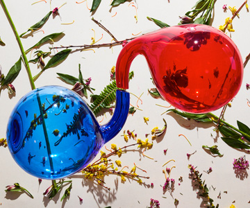 "Dirty Projectors – ""Lamp Lit Prose"" (Album der Woche)"