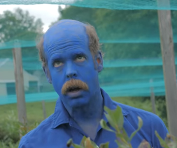"Will Oldham im Blaubeerenrausch: Neues Video von Bonnie ""Prince"" Billy"