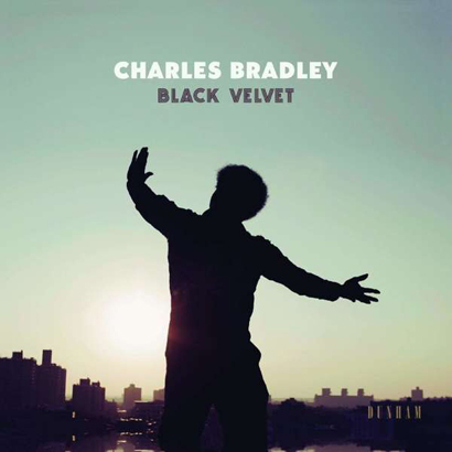 "Charles Bradley – ""Black Velvet"" (Rezension)"
