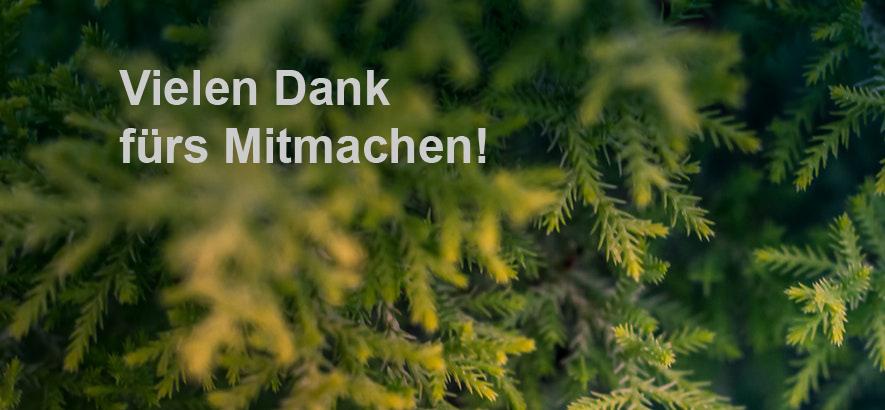 Weiße Schrift auf grünem Grund mit Tannenzweigen: Vielen Dank fürs Mitmachen!