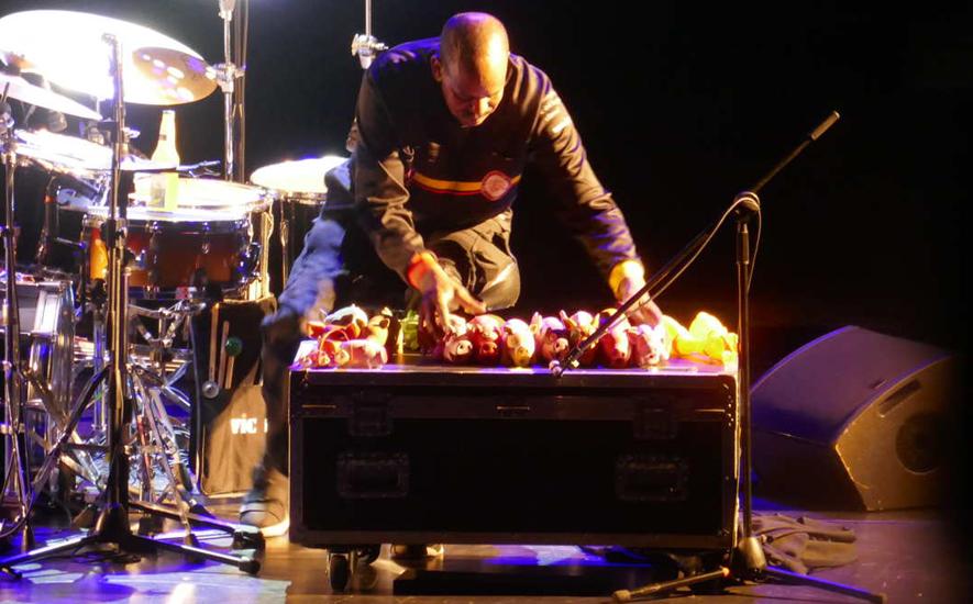 Tommy Campbell mit Quietscheschweinchen