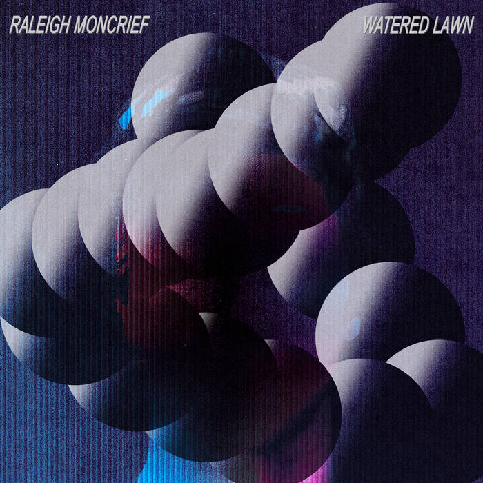CD-Cover von Raleigh Moncrief – Watered Lawn